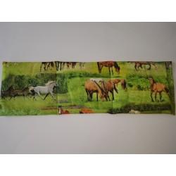 Dierenprint: Paarden